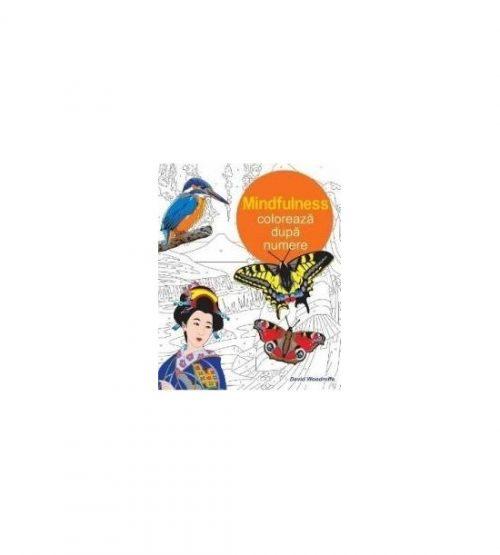 Mindfulness. Coloreaza dupa numere (ed. tiparita)