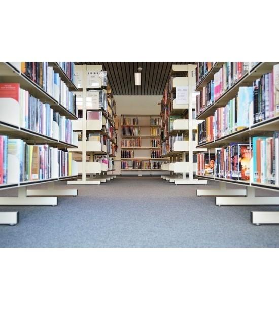 Distributie nationala in librarii (servicii distributie carte)