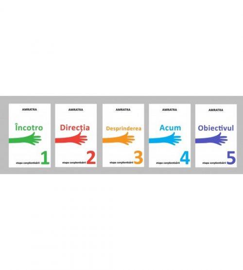 Set 5 carti Amratra - Etapa Constientizarii