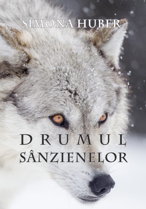 Simona Huber - Drumul Sanzienelor