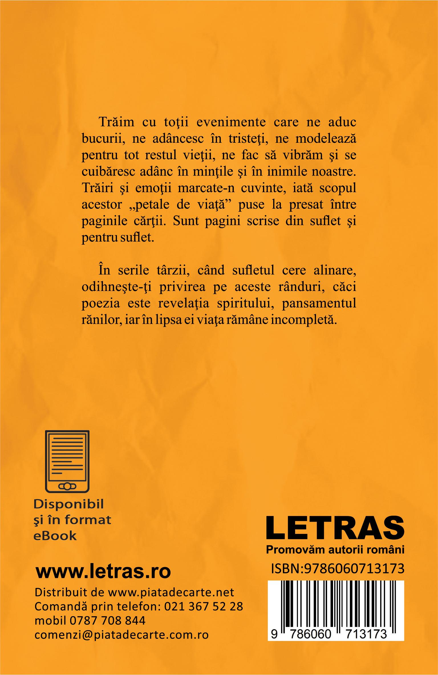 Dontu Viorel_Vechea strada_coperta 4_150 dpi_RGB